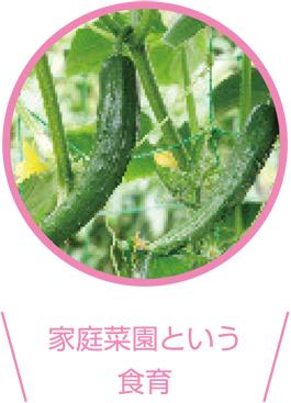 家庭菜園という食育