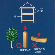 木造住宅の弱点