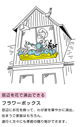 窓辺を花で演出できるフラワーボックス